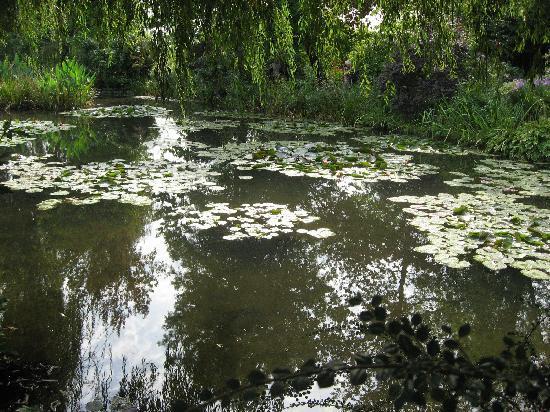 สวนและบ้านของเคลาด์โมเนท์: The Pond