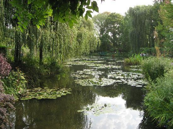 สวนและบ้านของเคลาด์โมเนท์: Another pond view