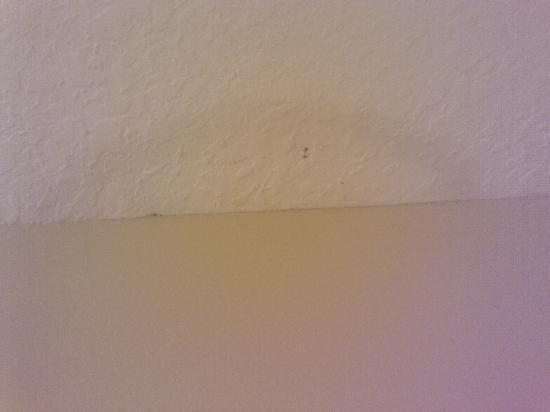 Grand Seas Resort: AC unit leaking onto the ceiling