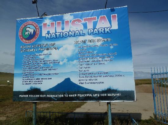 Hustai National Park: La loi du Parc