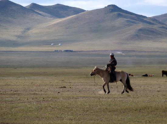 Hustai National Park: Un environnement magnifique