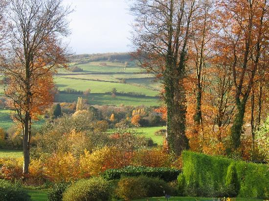 Spinneycross: Autum from a bedroom window