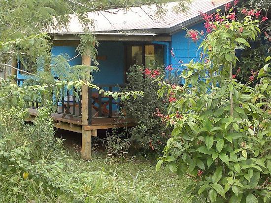 Lake Eacham Tourist Park: the blue cabin