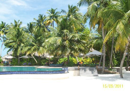 Veligandu Island Resort & Spa: Heaven on earth...