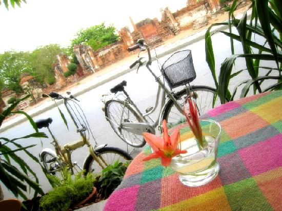 Coffee Old City: Bicycle for rent