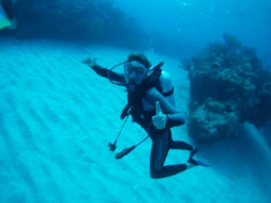 Club Med Turkoise, Turks & Caicos: My underwater camera is so/so.