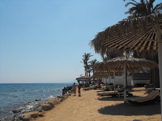 ฮิลตัน ทาบา รีสอร์ท แอนด์ เนลสัน วิลเลจ: The beach