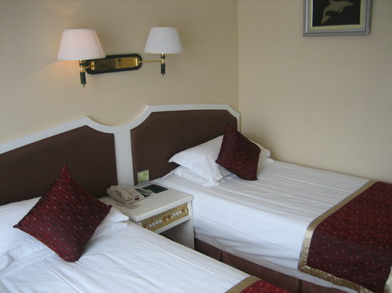 Danfenglin Tourist Hotel: Room