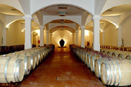 Portugal Premium Tours: Arraiolos - Monte da Ravasqueira - Pipas