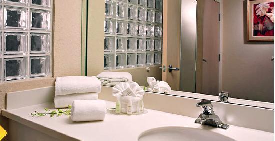 Comfort Suites Miami / Kendall: Bathroom