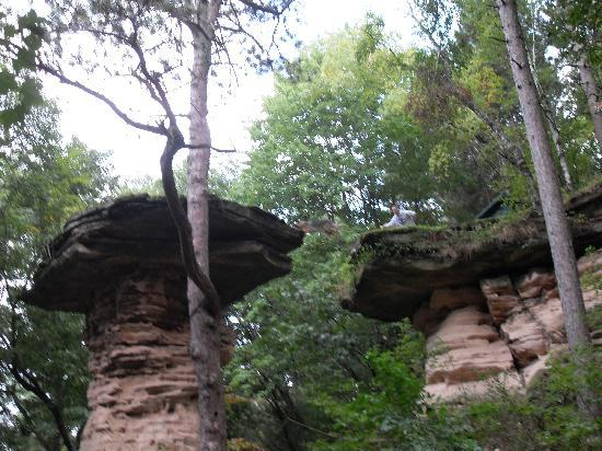 Dells Boat Tours: Dog jumping across Stand Rock