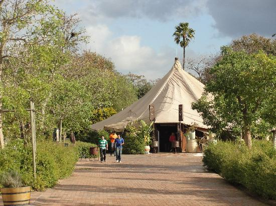 moyo Stellenbosch: Paisaje de ensueño en Stellenbosch
