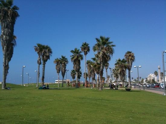 Dan Panorama Tel Aviv: Charles Clore park