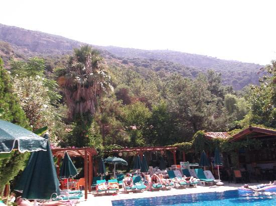 Perdikia Beach Hotel: Beautiful view of mountain from sun loungers