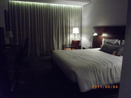 Hilton Garden Inn Santiago Airport: Double Room