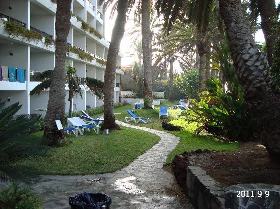 Dunas Don Gregory: Hotel garden