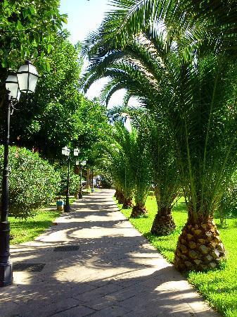 Hotel Capo dei Greci Resort & SPA: giardino