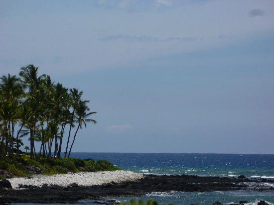 Hilton Waikoloa Village: Beautiful Views