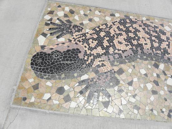 Chiricahua Desert Museum : 8 ft gila monster mosaic