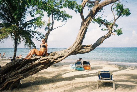 คลับโฮเต็ล ริอูออคโคริออส: beach