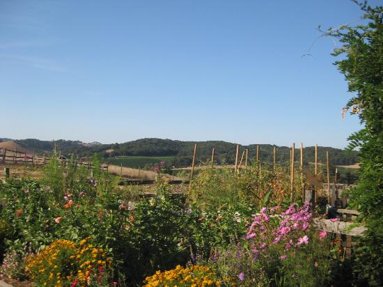 Orchard Hill Farm Bed & Breakfast: View