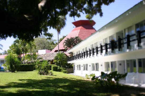Hotel Misión Palenque: vista desde su arbol gigante