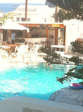 Sunflower Hotel: the pool and bar