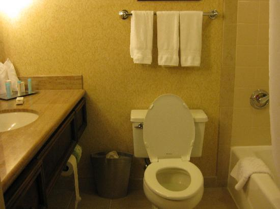 Hilton New Orleans Riverside: bathroom pic 1, executive floor room