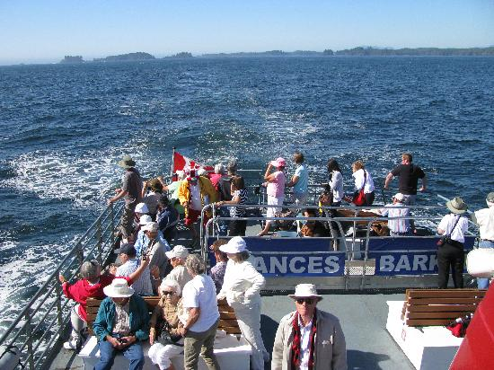 Lady Rose Marine Services: The middle deck
