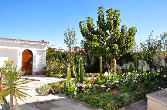 White Tower Villa: Jardín