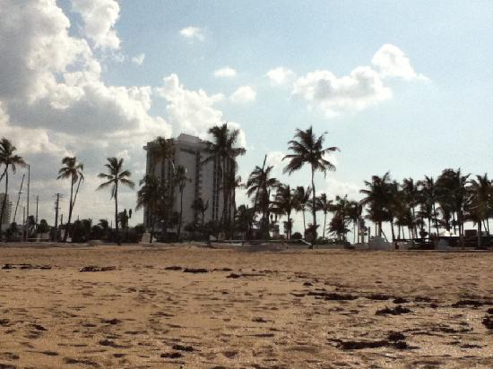 Bahia Mar Fort Lauderdale Beach - a Doubletree by Hilton Hotel: hotel from beach!