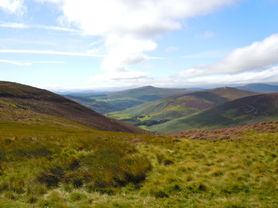 Gray Line Dublin: The Wicklow Mountains