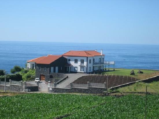 Vivenda da Saudade B&B: Vineyard freshly planted
