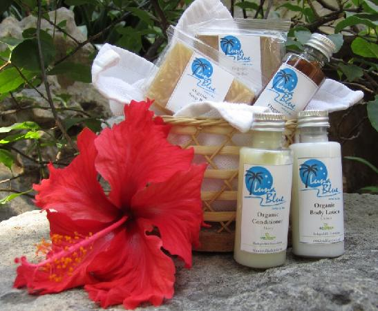 Luna Blue Hotel: Organic bath products in tropical flavors