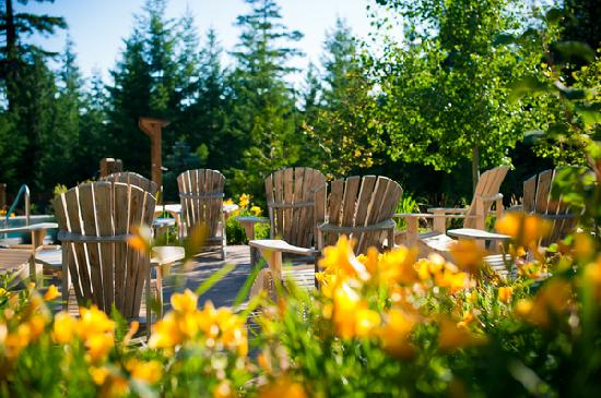 Scandinave Spa Whistler: Sun chairs