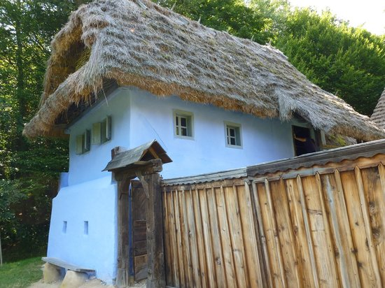 Astra National Museum Complex: Traditional House at Folk Museum