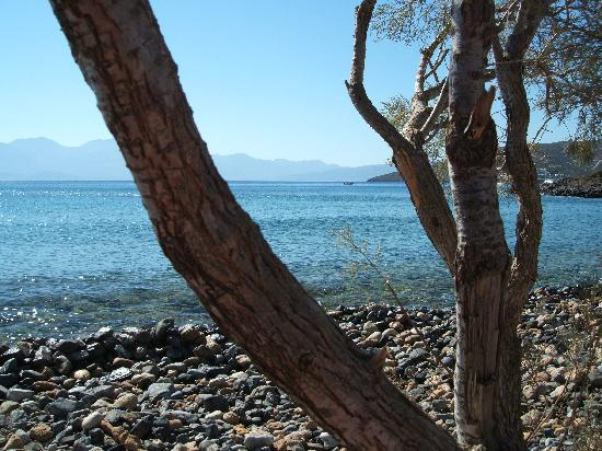 Akti Olous Hotel: View from one of more secluded beaches in Elounda