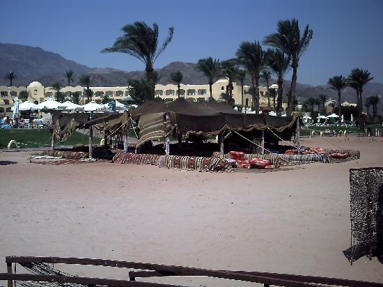 Sofitel Taba Heights: View from beach