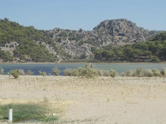 Dalyan Resort Spa: Turtle beach via local bus