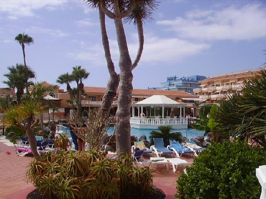 Tenerife Royal Gardens: View from Room B1-11