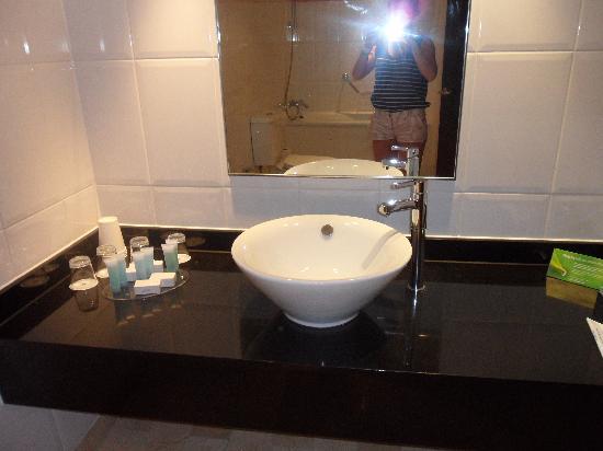 โรงแรมฮิลตัน ลอนดอน แกตวิค แอร์พอร์ต: Bathroom