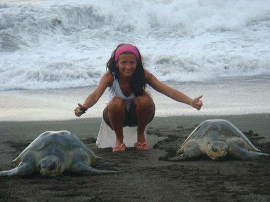 Nosara B&B Retreat: tartarughe Playa Ostional