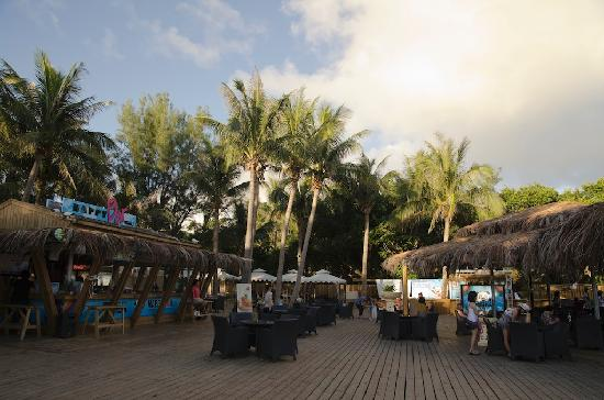 Happy Panda beach bar and restaurant: Bar