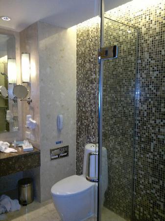 โนโวเทล แบงคอค สุวรรณภูมิ แอร์พอร์ท: Bathroom with shower.
