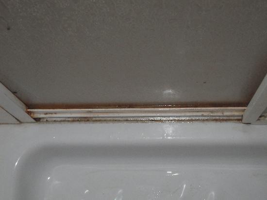 Grand Hotel Palace: sporcizia nella doccia 2