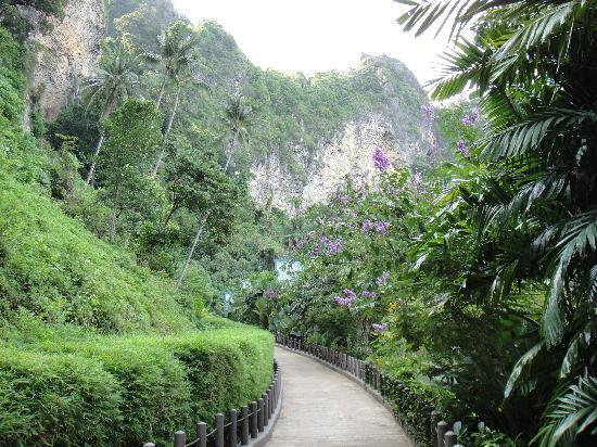 เซ็นทารา แกรนด์ บีช รีสอร์ท แอนด์ วิลล่า: Walkway to villas