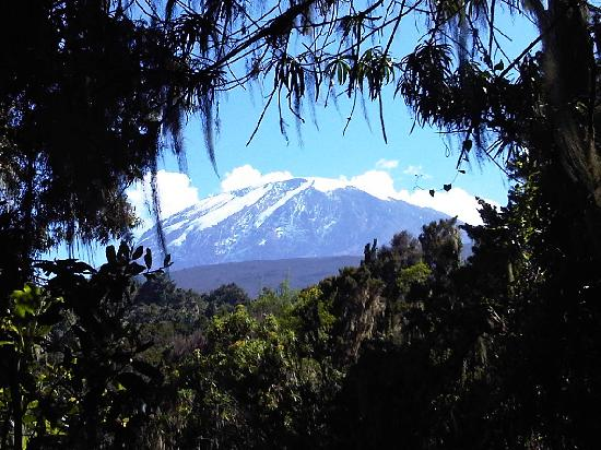Mount Kilimanjaro: Pretty little mountain?