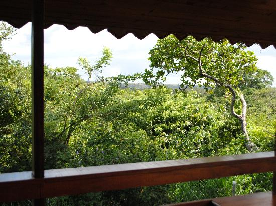 El Sol Verde Lodge & Campground: View from the balcony