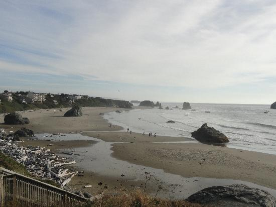 Bandon Beach Motel: One of the views from our room (206)