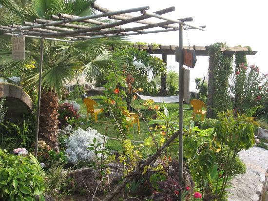 Hotel Sakcari: View of the garden